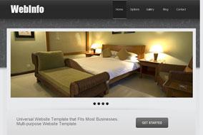 Web Info website template